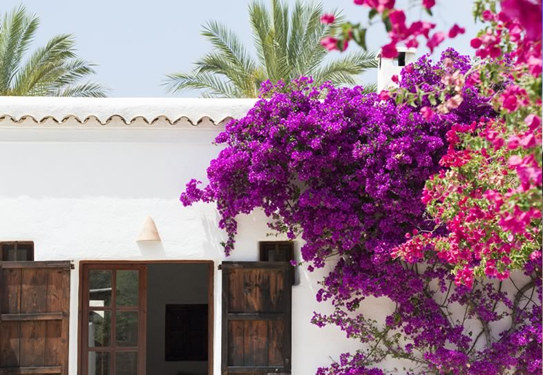 Villa Weddings - Ibiza